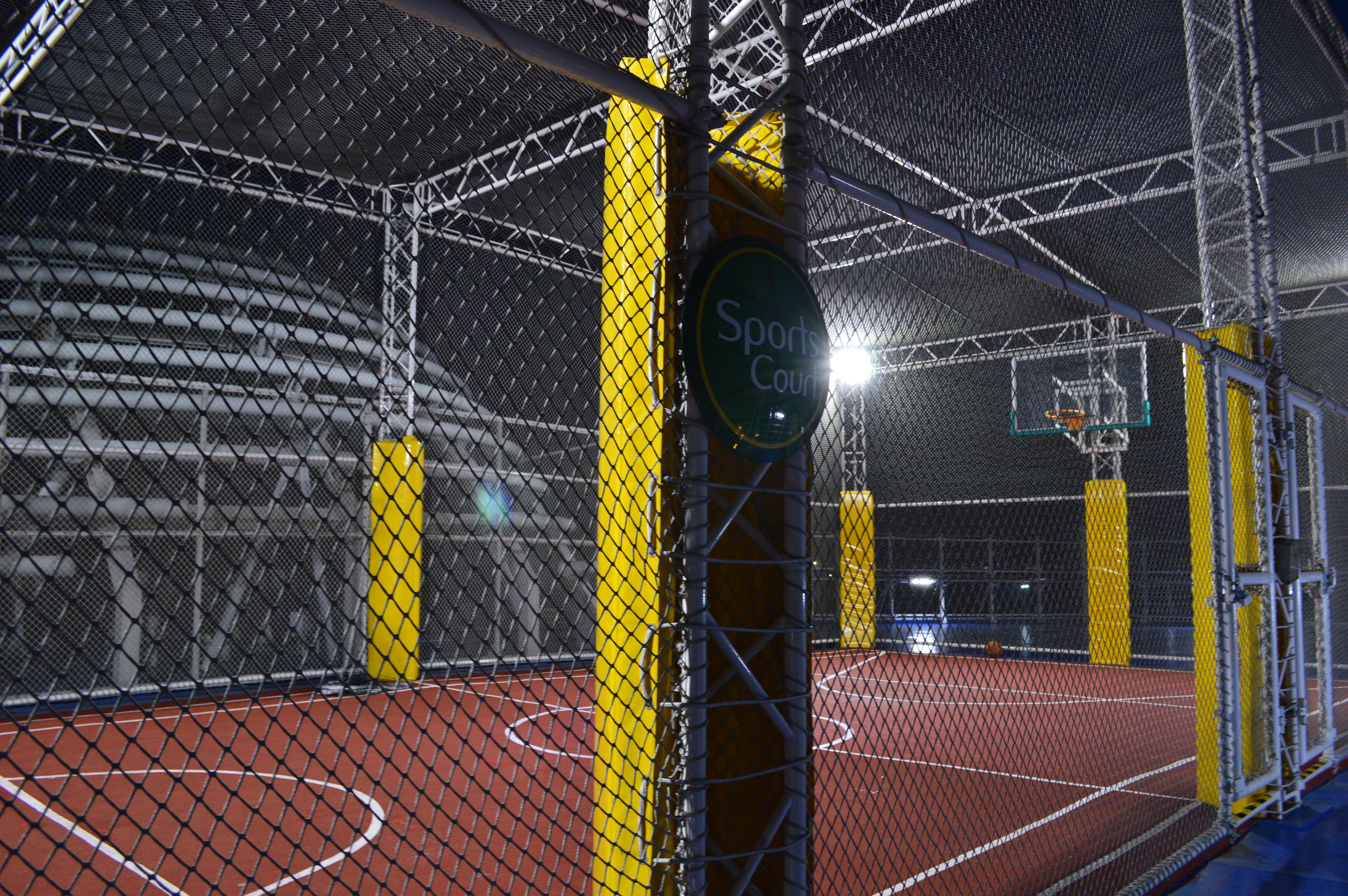 クルーズ バスケットボール